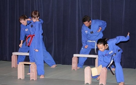 Martial arts beneficial in, out of classroom