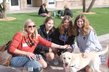 Students gather around a therapy dog on campus during finals weeks.