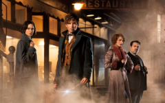 'Fantastic Beasts' transfixes audience