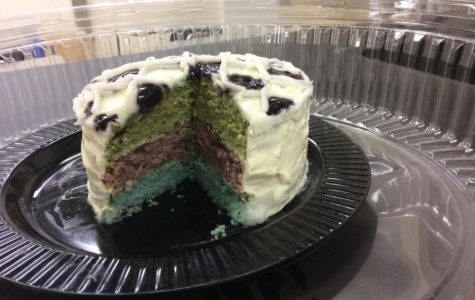 A multi-colored cake baked for the 2016 chemistry project (Melissa Riordan/NDP Staff)