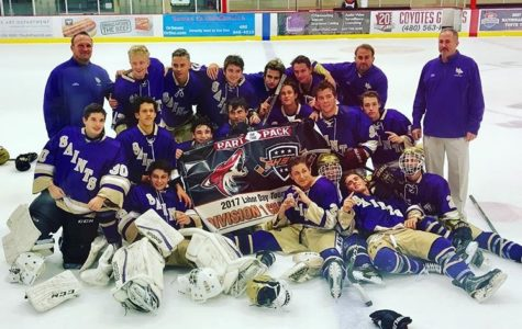NDP hockey teams win tournament titles
